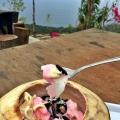 menu es thailand 2