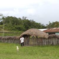Kisahku Bermalam di Kampung Wukahilapok