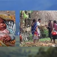 Noken Papua Warisan Budaya Tak Benda